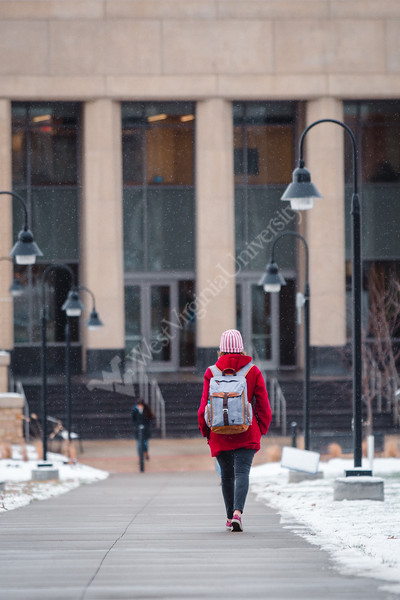 A student makes her way to the Agricultural Sciences Building on a snowy day.