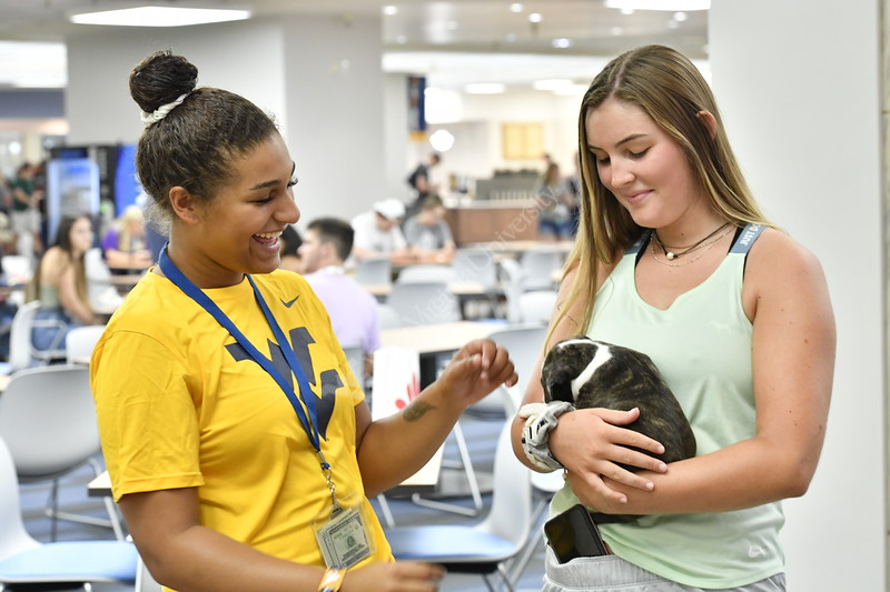 WVU students interact and enjoy meeting a new puppy at the WVU Mountain Lair August 19, 2019. Photo Greg Ellis