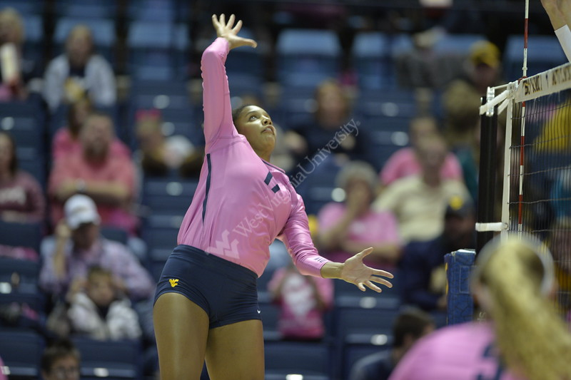WVU Volleyball took on Texas Tech in the Coliseum November 16, 2019. (WVU Photo/Parker Sheppard)