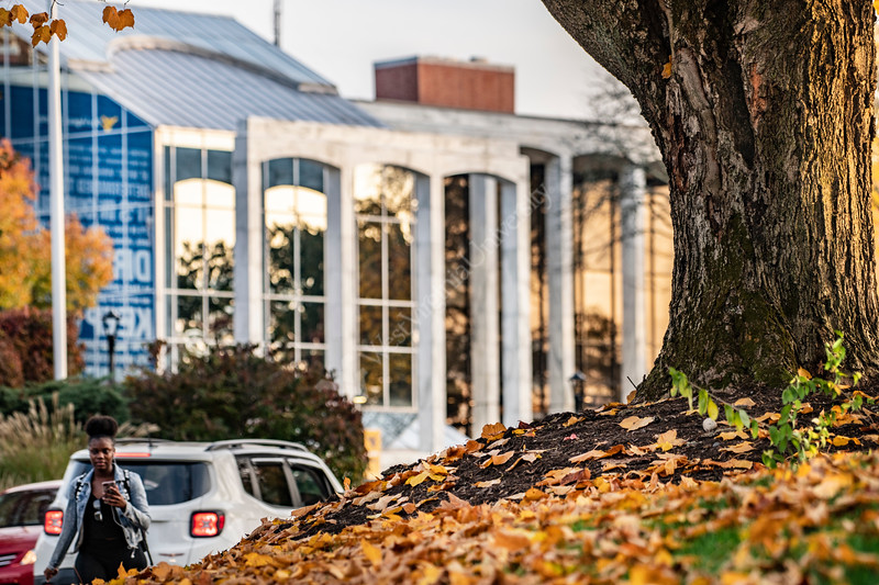 Campus Scenes on the downtown campus October 29th, 2019.  (WVU Photo/Brian Persinger)