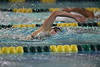 WVU Swimming and Diving teams began their season at the Gold-Blue meet at the WVU Natatorium on September 28, 2019. This meet was the last to be held in the old Natatorium - all further meets will be held at the new Natatorium located in Mylan Park, Morgantown, WV.