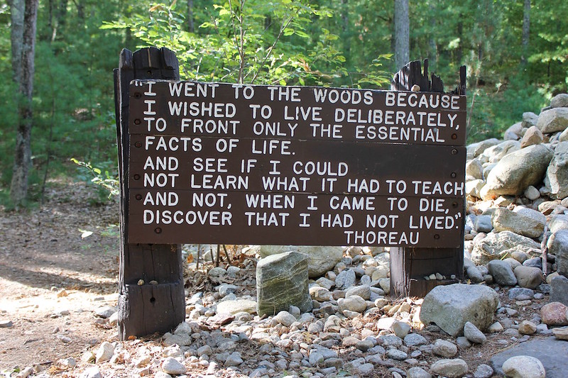 sign with Thoreau quote at Walden Pond