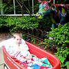 Chandler in his wagon walking in the Children's Garden (beautiul)!