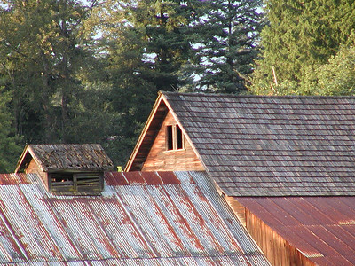 Bailey homestead, barn roofline and window