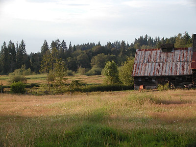 Bailey homestead, barn addition and field
