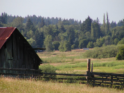 Bailey homestead, west barn and field