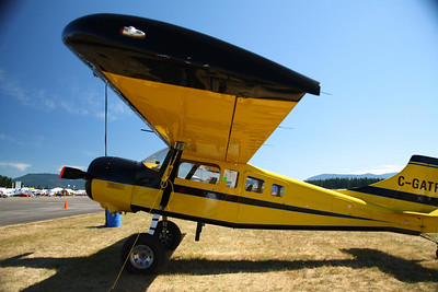 Arlington Fly-In, 20080713
