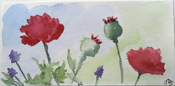 watercolor73
