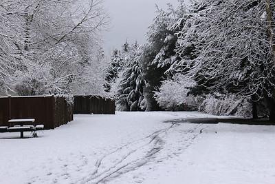 snow20170106n