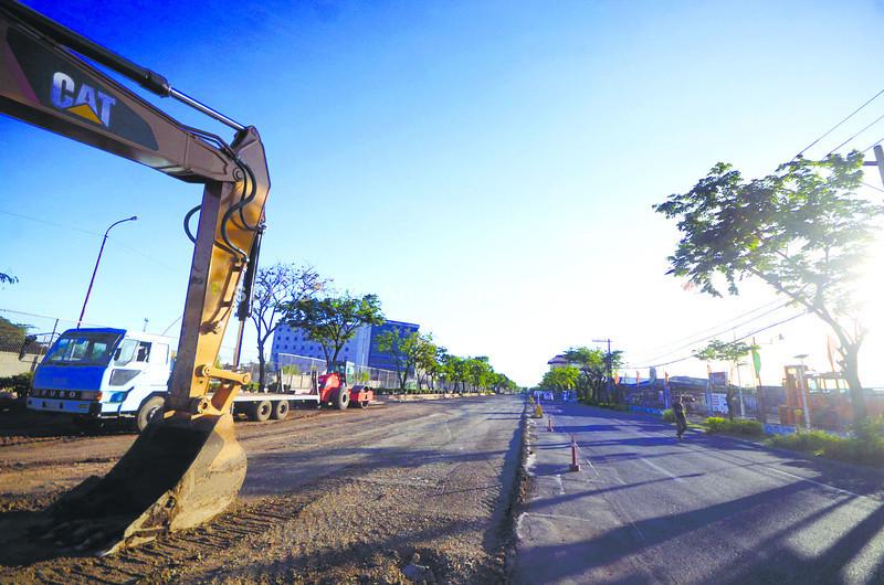 88 fire trees missing in Cebu City