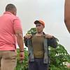 DAVAO. Gipahukas ni Davao City Police Director Ronald Dela Rosa ang uniporme sa pulis nga iyang nakita nga nagyupyop sa sigarilyo nga miresponde sa sunog. Ang DCPO nahimong awardee sa pagpatuman sa Anti-smoking ordinance sa dakbayan sa Davao. (Seth delos Reyes)