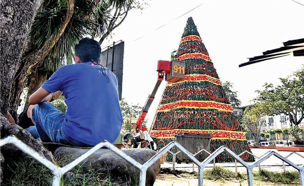 Giant Christmas tree in Davao City