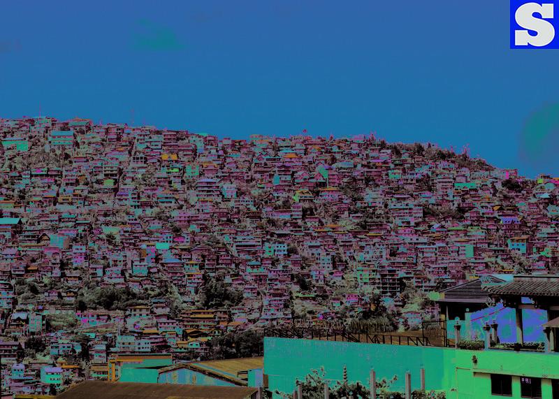 Favela houses