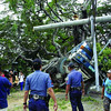 Police officers check on the century-old-acacia tree that fell on a truck and dragged powerlines and an electric post of Veco yesterday afternoon in Barangay Balud, San Fernando town. Sunstar photo Rey Campaña