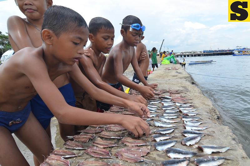 Pier boys flip sliced sardines to dry