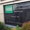 International Rice Research Institute