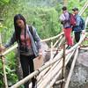 Reporters crossing a bamboo bridge