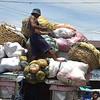 Baskets, sacks of vegetables