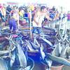 Isda sa Pasil Market, Cebu City