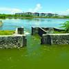 Fishpond versus mangrove