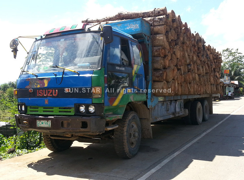 Truckload of logs intercepted in Cagayan de Oro