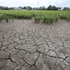 Dry spell in Guagua