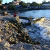 Fisherman at Kasamahan wharf