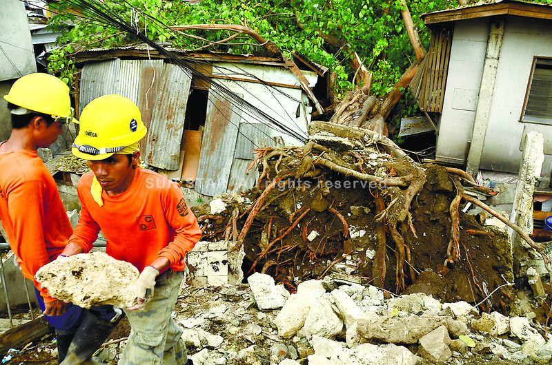 CEBU. Construction workers clear the area where an Indian rubber tree, nearly 30 feet tall, fell in Sitio Sta. Cruz, Barangay Capitol Site in Cebu City. Residents saved themselves when they fled after hearing ominous cracking sounds from the tree. (Amper Campana)