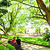 A couple take their lunch under the shade of the Acacia three in Poblacion Talisay, City.<br /> foto: Alex Badayos