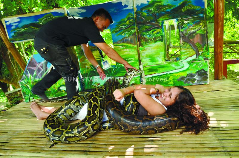 Snake massage at Cebu City Zoo