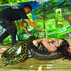Snake massage at Cebu City Zoo