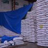 Enough supply of rice in Calbayog City, Samar
