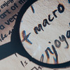 "Macro........""Magnifying""........Lisa Davis........Honors"