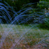 """Novice grade set subject / Water........"""" Water From The Sprinkler"""" by Simon Scaife<br /> <br />  All of this image is out of focus and flat. This photo needed to have the camera on the tripod and the aperture wide open and shot as fast as possible to blur the background and sharpen the foreground... NOT ACCEPTED."""