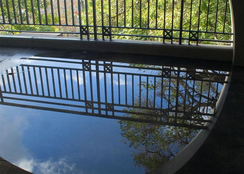 "Open/Novice........""Urban Reflection"" by Jacuie Scott........Acceptance"