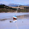 "Novice Grade open........"" The Bay At Low Tide ""  by  Tom McConnell........Accepted.<br /> <br /> THE BAY AT LOW TIDE – beautiful composition with the twin diagonals of the mast and its reflection – the horizon is straight, well done, but the lighting is a bit full on – slight cross lighting would give more depth to the subject – personally, I'd crop off about half the sky, bringing the horizon closer to the top third – this would make it even more balanced – yes, I am going to mention the non-sharpness which reduces this to an                                                                                                      ACCEPTED"