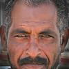 "Set Subject / Portrait, Novice grade........"" Nubian ""  By  Grant Waterman........Acceptance."