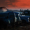 """ Sunset On The Junkyard ""  By  Allan Ford.<br /> <br /> You chose a great time of day for this shot which adds a sense of atmosphere to the image. I wonder what this shot would be like from a slightly lower viewpoint to eliminate the row of trees behind the trucks so just the trucks themselves were silhouetted against the sky?"