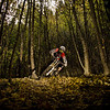 "B grade open........"" Autumn Corners ""  By  Simon Williams........Merit.<br /> <br /> A great capture of a difficult shot. Image is beautiful and sharp. Great use of flash in a dark area to light up the rider in a great position. The wide angle shows us a lot of the forest. I quite like the converging lines of the tree trunks. No good for architecture but really works here. To me the rider is a bit central and a bit small - you want to see the eyes a bit more. I would have cropped the image a bit more to make the rider larger in the frame. You've chosen to show us a lot of the landscape but I think we're losing the real impact of speed and energy that the image demands. It's a good enough image to crop and and vignette to keep the forest feel. It is very close to an Honours."