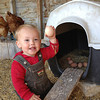 Adrienne Rowley SCOUT THE EGG GATHERER<br /> a very busy image – if you had shooed away those chooks in the background and moved in a bit, it would be so much better – the subject we want to see is the child and the eggs in the nest – good skin tones and detail even in the darkest shadows.<br /> 													 ACCEPTED