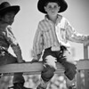 Open	Young calf riders	A	<br /> What a crisp beautiful black & white and absolutely pin sharp. Great blurred background getting rid of any distractions Good contrast between the two boys, light and dark. The only thing that stops this being an honours is that you've cut the boy's hand off and as he was sitting still and as an A grader I think this could have been included . As it is he is reaching out of the image.	MERIT