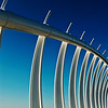 Whale Bones, Te Rewa Rewa Bridge  Thierry Huet<br /> An absolutely stunning image in which the subject contrasts wonderfully against the bold blue sky and curves nicely through the shot with an interesting array of repeating lines. You can be proud of this work!<br /> Honours