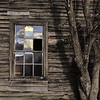 The Old Schoolhouse  Rob norman<br /> The texture and colour of the tree bark goes so well with the wooden boards on the schoolhouse. The window adds interest and I especially like the angle of the top half of the window panes. <br /> Accepted