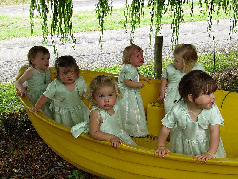 Babes in a boat 	Judy King	Novice<br /> I couldn't help laughing at this, I can just imagine the scene, 6 unhappy babies , not happy about being in the boat and not interested in having their photos taken apart from the little one in the centre. You certainly captured six different expressions. I hope they cheered up and the  bride got one happy shot of them. It certainly tells a story. I find I keep roaming around and around the image trying to find somewhere to settle. Also the background is rather a distraction with the fence and the light expanse of road It doesn't really go with the babes in their finery .A great record shot of what I hope was otherwise a happy fun filled day.	ACC
