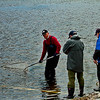 Old mates Whitebaiting  -  Bob Steel<br /> A nice record shot of the guys whitebaiting but not really a lot of action going on. Because the main subject are the three men perhaps we need to see more of their faces(get them to turn sideways) rather than their backs or lighten the face we can see. As the whole background is water the men need to be interesting enough to hold our attention.  B Grade Accepted