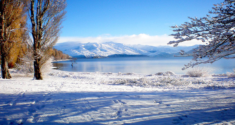 Snowy Morning lake Wanaka  -  Bob Steel<br /> What a beautiful scene The winter snow down there must have been spectacular. I like the contrast of brown poplars with all the blue and white. You have framed the lake well with the trees either side. That row of white fluffy clouds sitting on the mountain tops add to the peaceful feeling this image gives. The only thing that stops it from being an honours is the crooked horizon which slopes badly to the left. I don't think this is just the curve of the lake edge. B Grade Merit