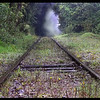 Tracks to Nowhere - Courtney Black