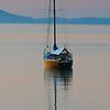 Golden Bay Evening - Brian Dowling
