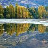 Reflect - Marg Balogh