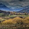 Autumn Colours - Jacqui Scott